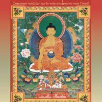 Méditation quotidienne sur le Bouddha Shakyamouni