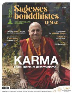 Enseignement du mois : Janvier 2020 : Le cœur du Dharma, karma et vacuité