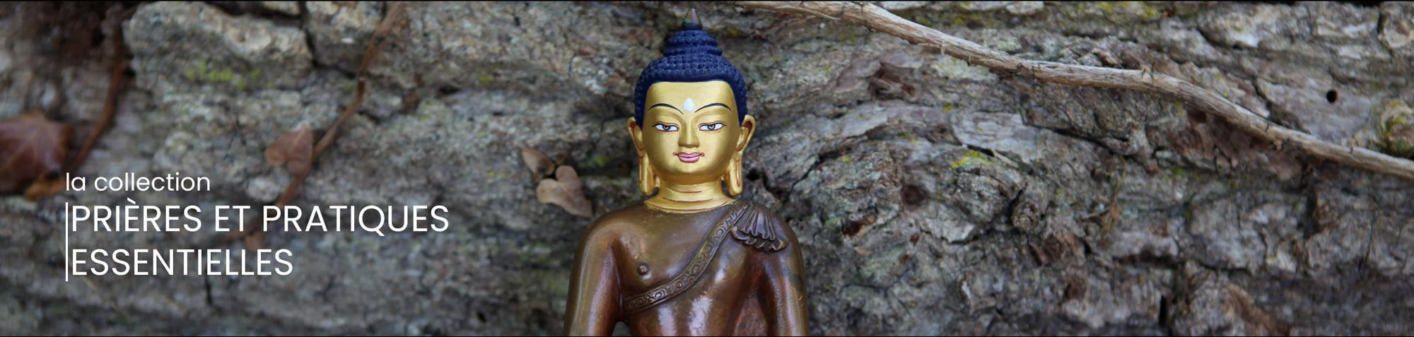editions mahayana prieres et pratiques essentielles