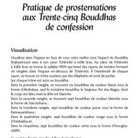 Pratique des prosternations aux 35 Bouddhas