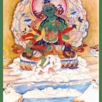Carte Tara verte – Imprimée