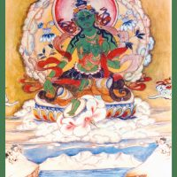 Carte de Tara verte