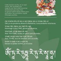 Carte de Tara verte – Fichier pdf