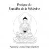 editions mahayana bouddha de la médecine