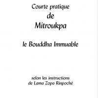 Courte pratique de Mitroukpa – Format PDF