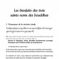 Les bienfaits des trois saints noms des bouddhas – Format PDF