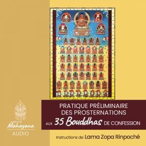 Pratiques des 35 bouddhas de confession editions mahayana