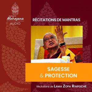 sagesse et protection mantras lama zoap rinpoche editions mahayana