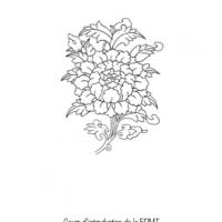 Premiers pas dans la méditation – Format PDF