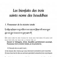 Les bienfaits des trois saints noms des bouddhas – Fichier pdf