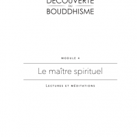 DB4 – Le maître spirituel – PDF